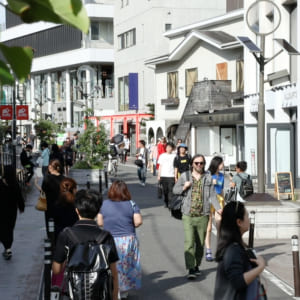 キャットストリート(明治神宮)