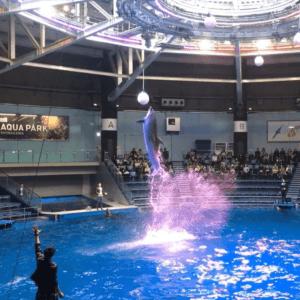the Maxell Aqua Park Shinagawa(Shinagawa)