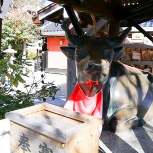 Kitano-Tenmangu(Sannomiya)