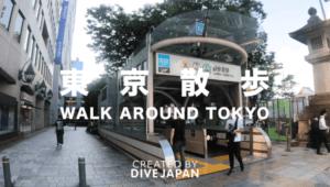 Walk around Tokyo (Cat Street)